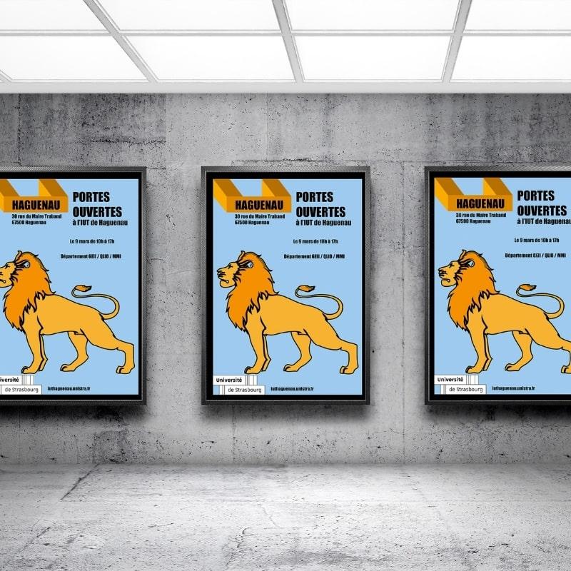 Affiche Portes Ouvertes IUT de Haguenau
